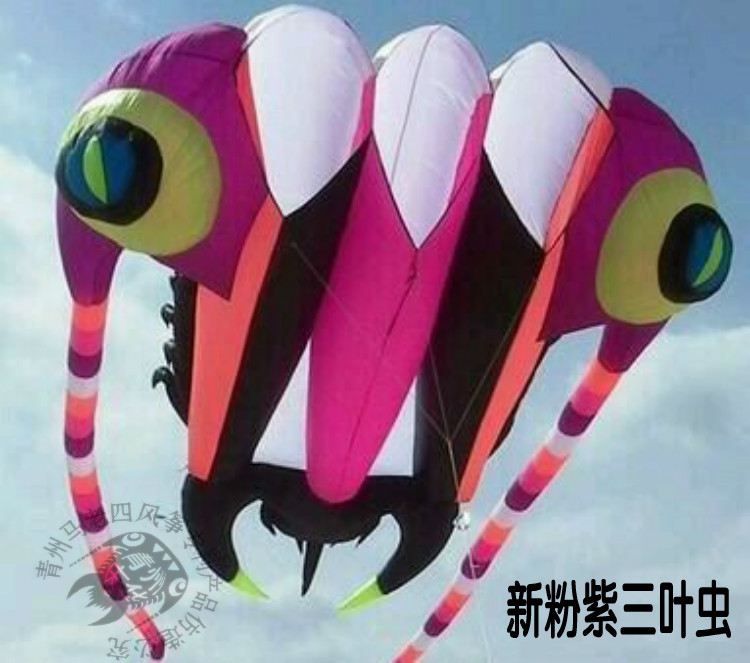 Spirited Hengel Sport Inflatable Animal Huge Trilobite Novelty 2016 Giant Kite Cerf Volant Single Line Kites Flying Butterfly Toy Beauty Firm In Structure Outdoor Fun & Sports