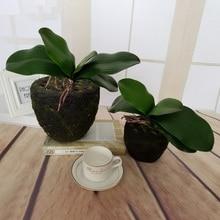 Новинка 1 шт. Настоящее касание фаленопсис искусственное растение с листьями лист декоративные цветы вспомогательный материал цветок украшение Орхидея лист
