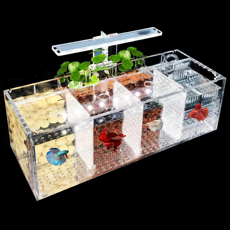 Petforu Turtle Crock Betta Tank Isolation Plastic Turtle Fish Tank Spider Breeding Acrylic Cover Aquariums & Tanks