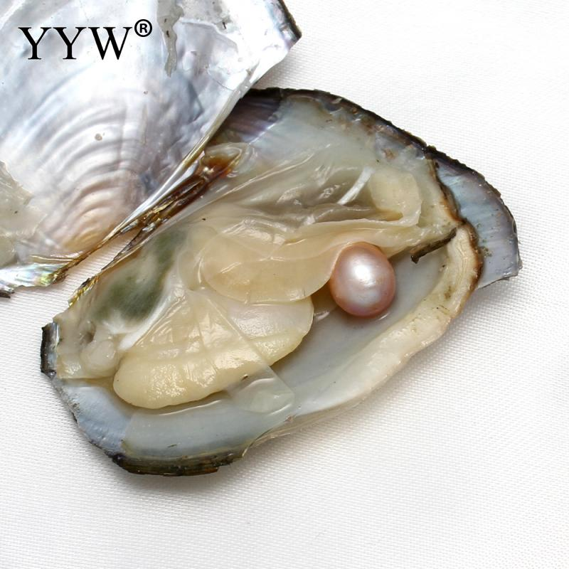 YYW Natural Freshwater Cultured Love Wish Pearl Oyster One Shell Pearl Oyster Mussel with one PC Pearl Loose Beads Women Gifts