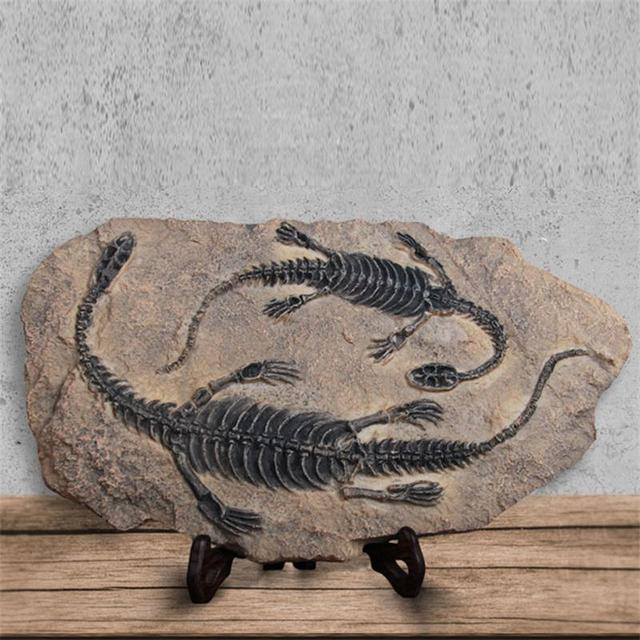 Resin Handicrafts Simulation Dinosaur Fossil Creative Hand Made Home Decor Jurassic Park Private Museum Crafts Offbeat