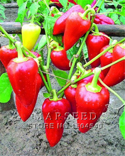 Free Shipping,50 Giant sweet pepper seeds –Marconi Peppers -DIY Home Garden Vegetable Plant