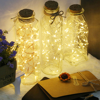 Creative Design Warm white micro copper wire LED String light with glass bottle for home wedding party Holiday DIY Decorations