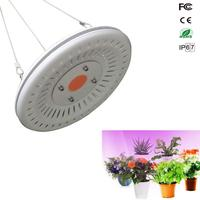 Growing Lamps LED Grow Light 50W Full Spectrum Plant Lighting Fitolampy For Plants Flowers Seedling Cultivation
