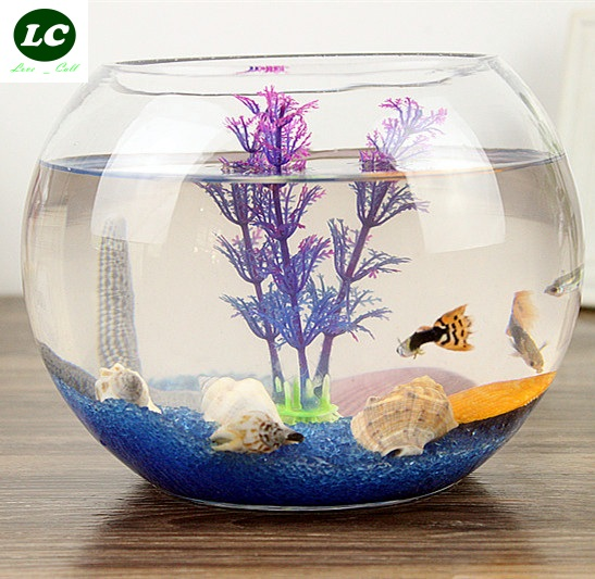 Online buy wholesale round fish bowl from china round fish for Circular fish tank