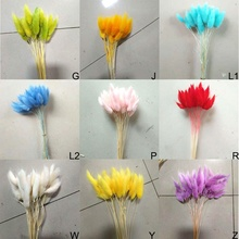 30Pcs/lot Natural Dried Flowers Colorful Lagurus Ovatus Real Flower Bouquet for Home Wedding Decoration Rabbit Tail Grass Bunch 1 bunch mini gypsophila flower forget me not bouquet natural dried flower wedding decorative flowers shop home decor