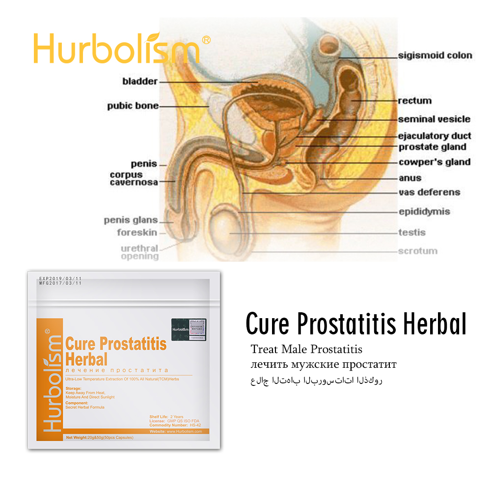 Natural Herbal Ingredients To Cure Prostatitis And Nourish Prostate Functions, Improve Male Sex Ability