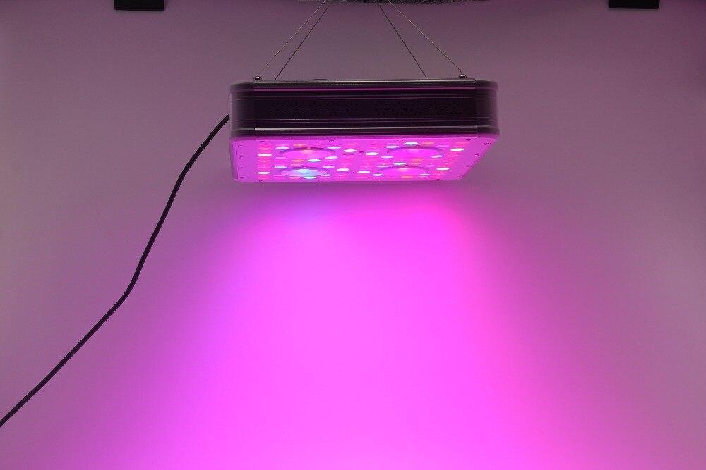 IDEA LIGHT Amazon Hot-selling Daisy Chain Advanced Platinum Full Spectrum 300w 300 Watt LED Grow Lights Growing Kit
