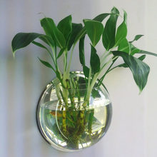 AMW 1PC High Borosilicate Glass Hanging Glass Flower Planter Vase Terrarium Container Home Garden Ball Decor(China)
