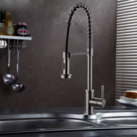 Multi Function Stainless Steel Kitchen Faucet SUS304 Stainless Steel Pull Kitchen Faucet Stainless Steel Spring Faucet
