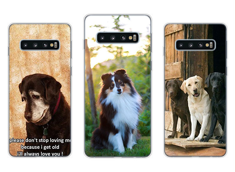 Transparent Soft Silicone Phone Case I Love My Dog for Samsung Galaxy S10 S10e S10 Plus S10 M10 M20 Cover in Fitted Cases from Cellphones Telecommunications