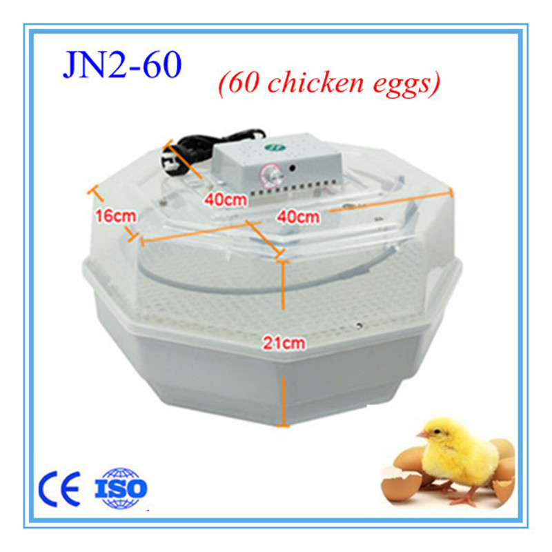 egg incubator High hatching rate Holding 60 eggs Family type Mini Egg Incubator CE approved 98 lucky printed pullover hoodie and sweatpants