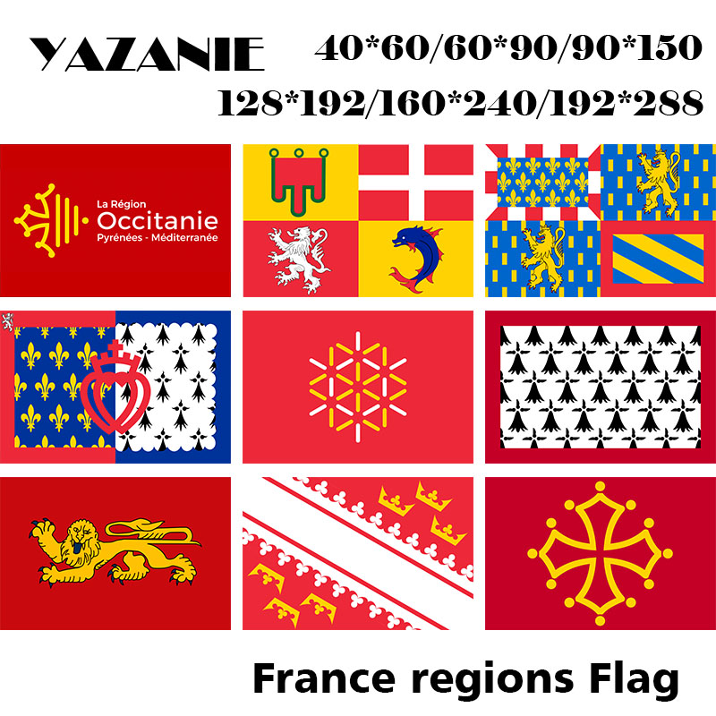 France Champagne Ardenne Flags FRENCH PROVINCIAL FLAGS FLAG 60x9