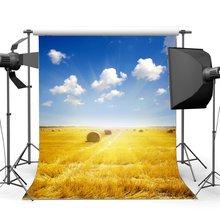 Autumn Harvest Farmland Backdrop Golden Wheat Field Straw Hay Bale Blue Sky White Cloud Holy Lights  Background