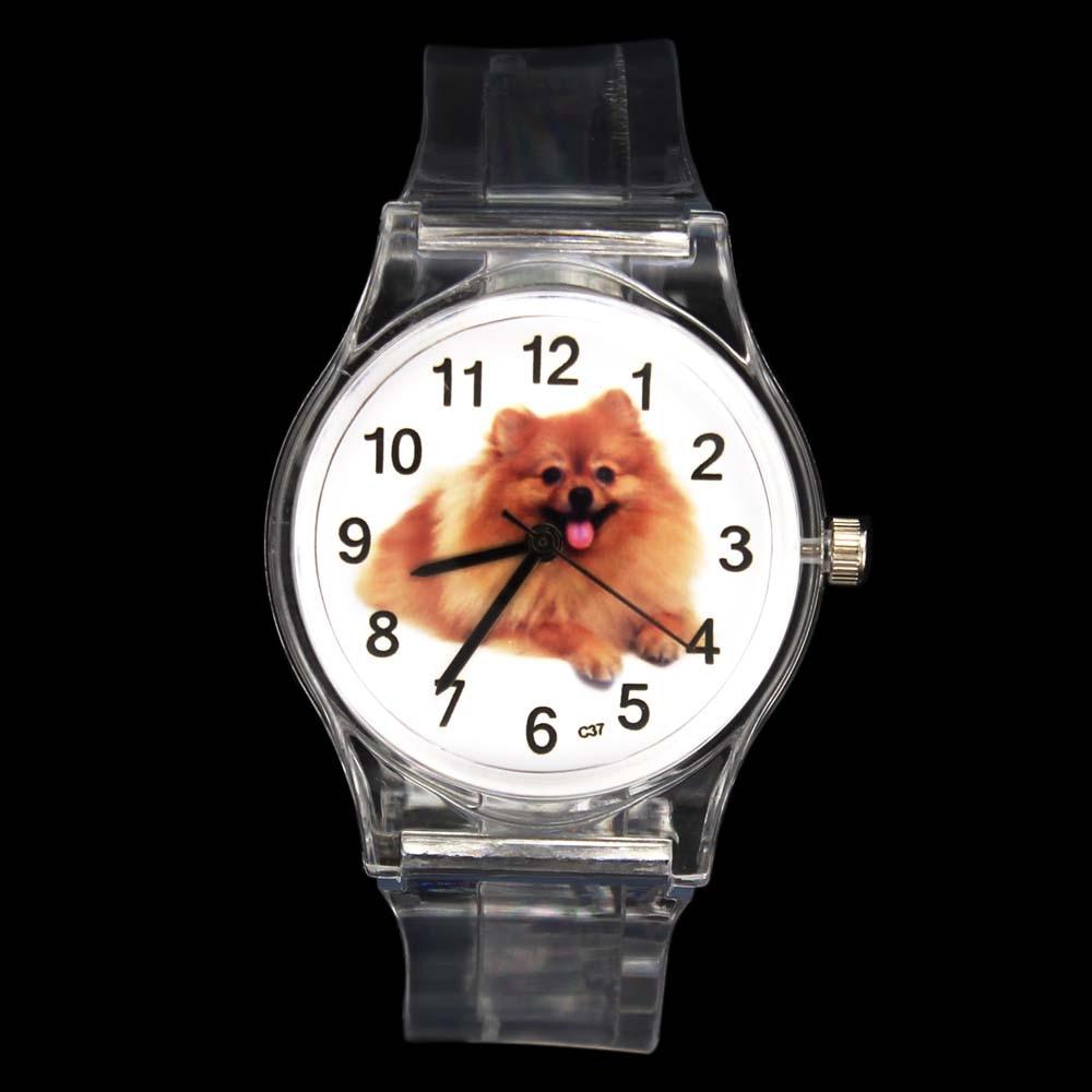 Pomeranian Pet Dog Puppy Animal Kids Children Quartz Watch Baby Boy Girl Sport Transparent Band Gift Wrist Watches