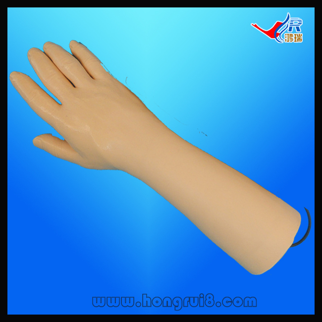 ISO IV Training Hand, Venipuncture Hand Model, IV Injection Hand model economic injectable training arm model with infusion stand iv arm injection teaching model