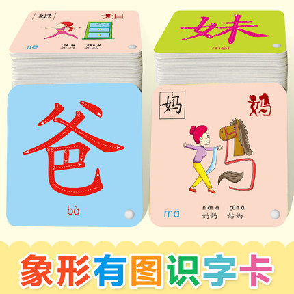 Chinese Kids Book Characters Cards Learn Chinese 202 Pcs/set With Pinyin Books For Kids Children/color/art Books Libro
