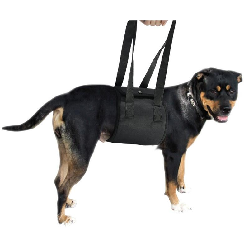 Dog Harness Vest Dog Lift Support Harness Pet Accessories Dogs Collar Leash Pets Assist Sling for Mobility Rehabilitation in Harnesses from Home Garden