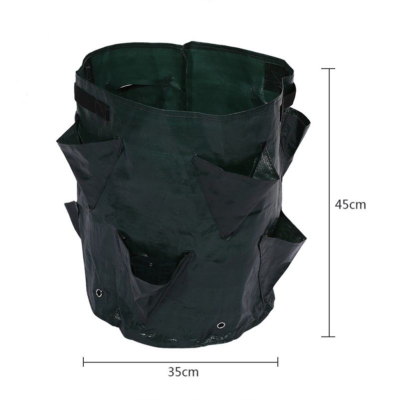 Image 4 - Felt Cloth/PE Flowers Cultivation Strawberry Vegetable Planting Growing Bags Garden Supplies Strawberry Container Grow Craft-in Grow Bags from Home & Garden