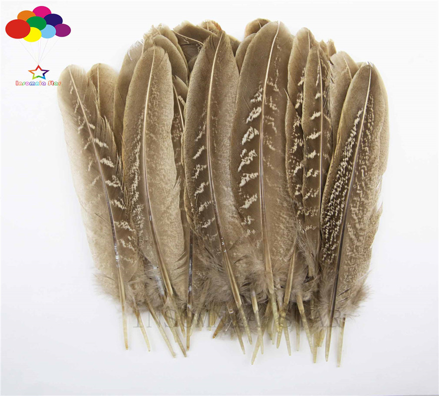 10pcs 100% natural premium pheasant feather 10-15cm/4-6inch brown white tail beautiful for Diy carnival costume mask headdress