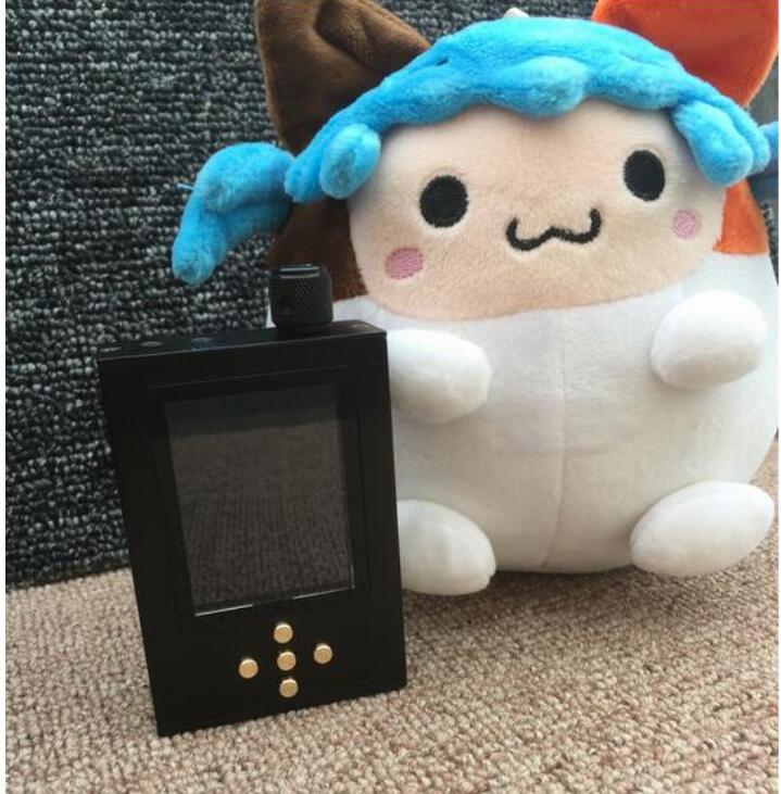 bilder für Neueste DIY 16G Zishan DSD Professionelle Verlustfreie Musik MP3 HIFI fieber tragbare verlustfreie musik player AK4495SEQ DSD fest lösung