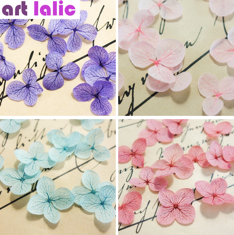 1 Box Real Dried Flowers Dry Fl Manicure Stickers Diy Preserved Flower Leaf With Gl