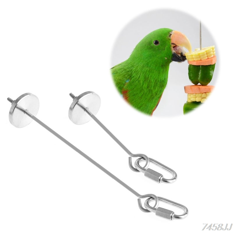 Stainless Steel Small Parrot Toy Meat Kabob Food Holder Stick Fruit Skewer Bird Treating Tool Durable Birds cage Accessories #