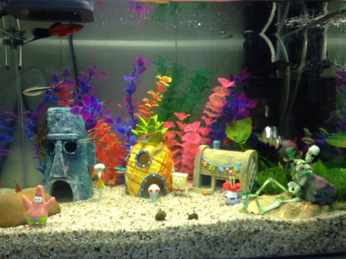 Popular Kids Fish Tanks Buy Cheap Kids Fish Tanks Lots