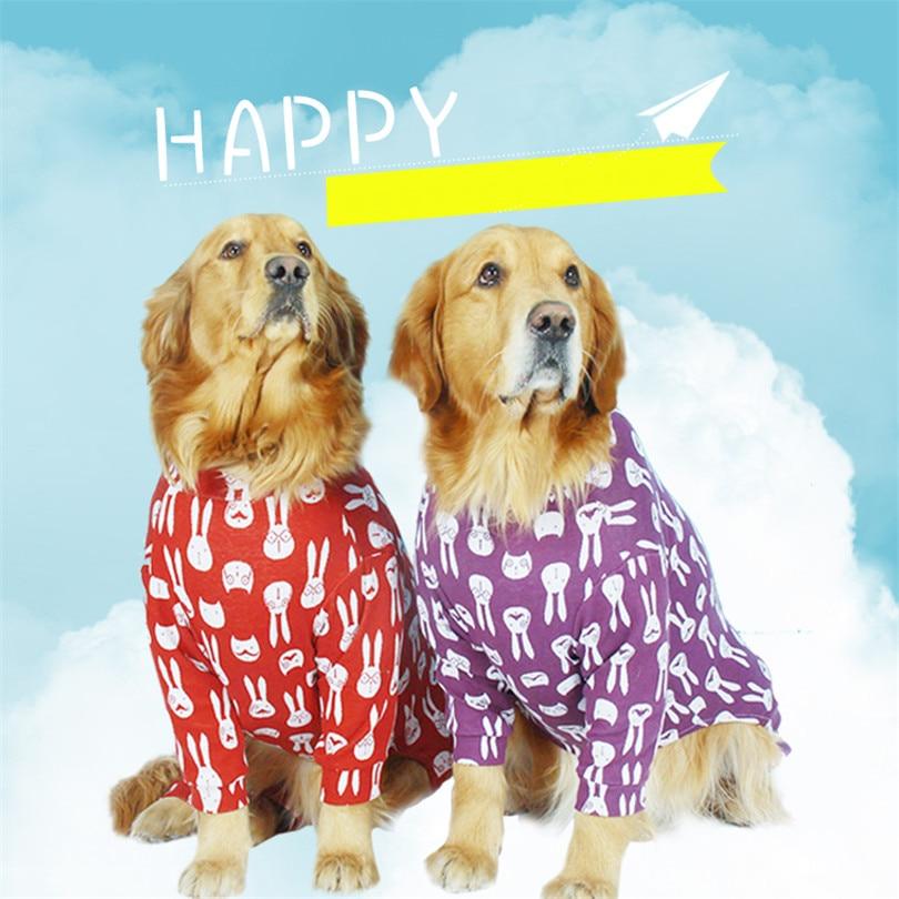 Golden retriever Dog coat (6)