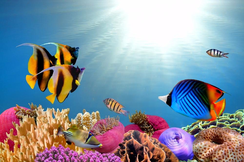 Background Camera & Photo Ocean Fish Photography Backdrop Kids Vinyl Backdrop For Photography Photocall Underwater Background For Photo Studio Cortina