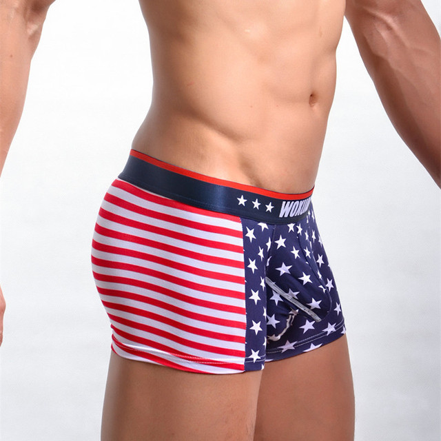 85858caa8700 Men s Underwear Underpants Cotton Foreign Trade Aliexpress American Flag  Printing Reinforcement Boxers