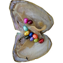 20 штук, натуральная устричная жемчужина, пресноводные устричные жемчужины с мидий в виде ракушки, забавные игрушки для детей, взрослых, рождественский подарок
