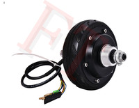 5 250W 48V Holding Brake Electric Wheel Hub Motor Electric Scooter Motor Electric Hub Motor For