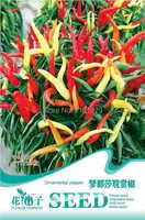(Mix minimum order $5)1 original pack 20 pcs Ornamental Pepper Seeds,vegetable seeds free shipping