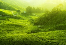 Laeacco Wonderful Spring Green Terraces Field Landscape Photography Backdrops Vinyl Backdrop Custom Backgrounds For Photo Studio