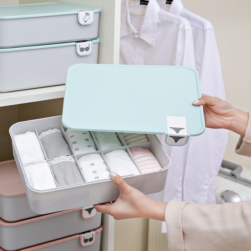 boxes:  Boxi Home Underwear Storage Box Organizer Plastic Dust-Proof Storage Boxes For Ties Sock Bra Jewelry Sundries Organizers Boxes - Martin's & Co