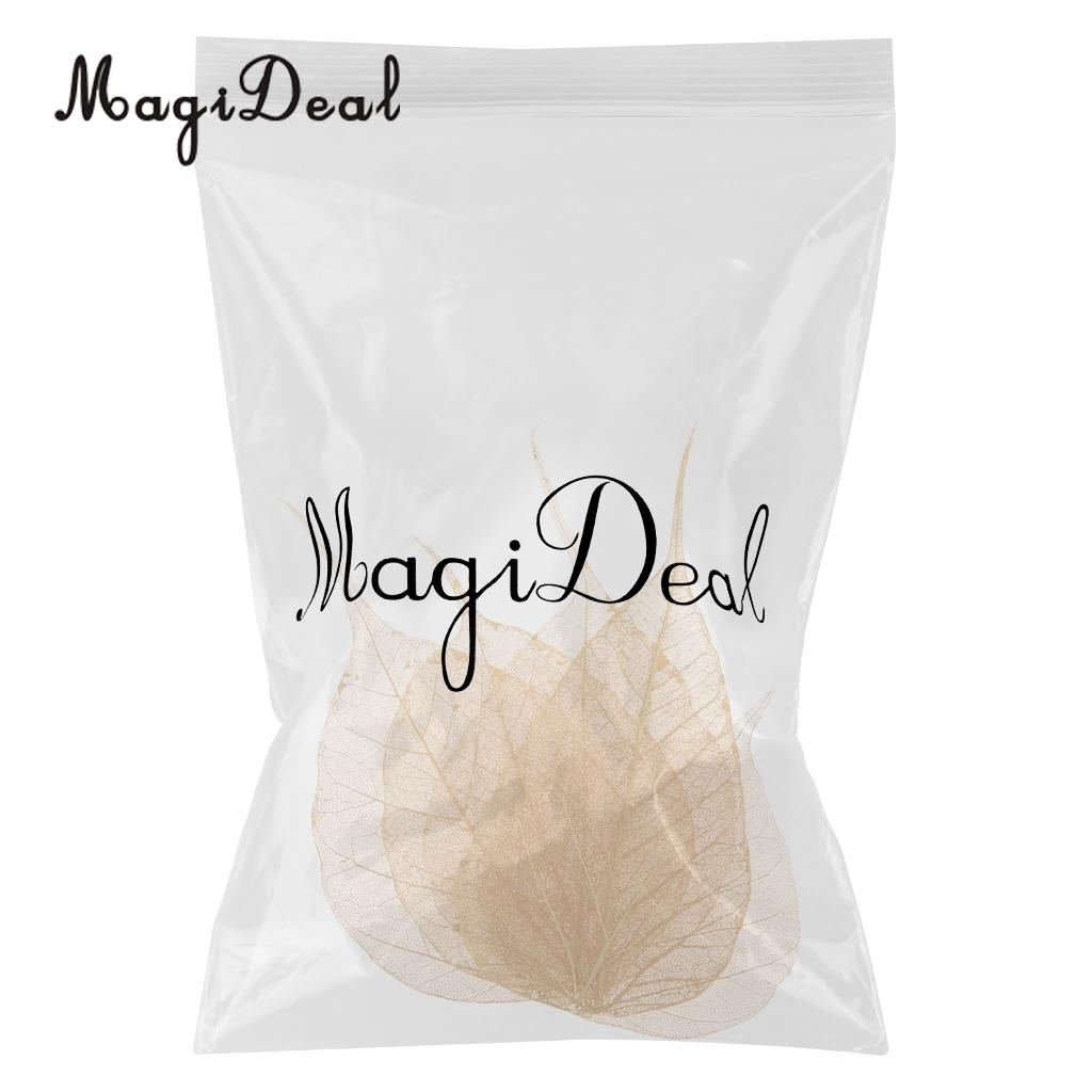 5pcs Natural Pressed Dried Linden Leaves Bodhi Leaf for DIY Arts and Crafts