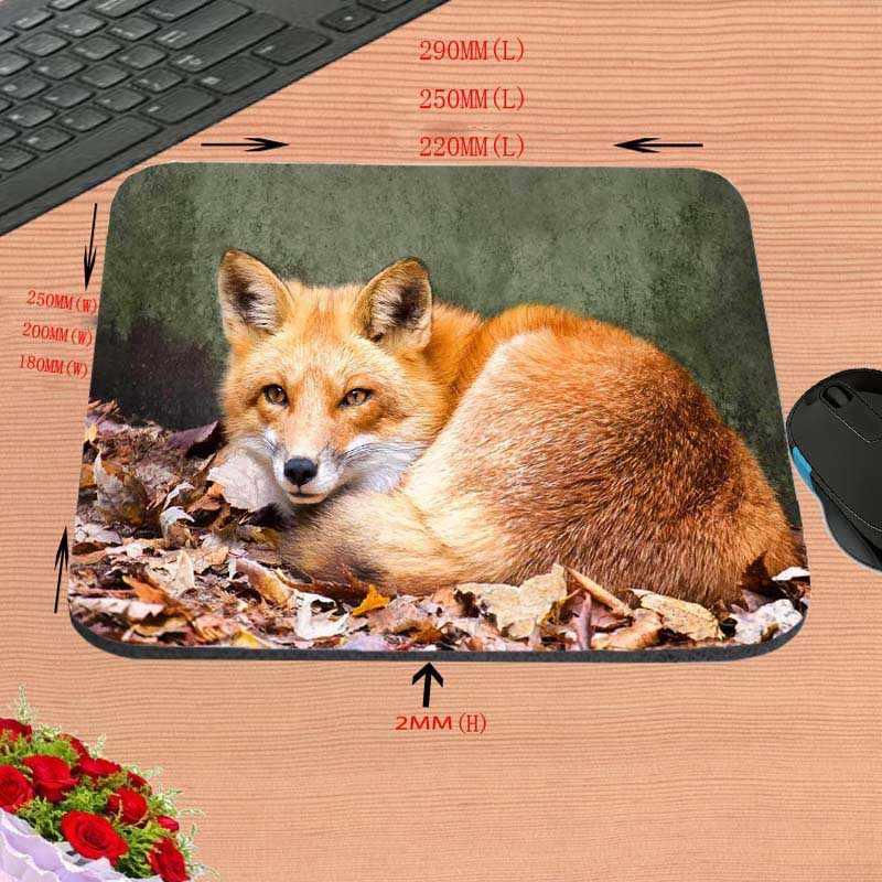 Mairuige ที่ดีที่สุดตลกสัตว์ทะเลทราย Ear Fox Custom Mouse Pad สำหรับขนาด 18*22 ซม.และ 25*29 ซม.และ 25*20 ซม.ของขวัญ