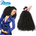 8A Malaysian Afro Kinky Curly Virgin Hair 4 Bundles Malaysian Curly Hair Curly Weave Human Hair Extension Remy Hair Extensions