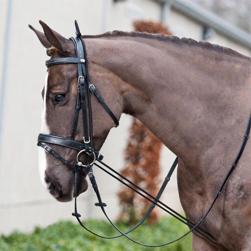 3M Horse Riding Bridle Halters Elastic Horse Neck Stretcher Horse Rein Racing Equipment Equestrian Supplies Training Tool