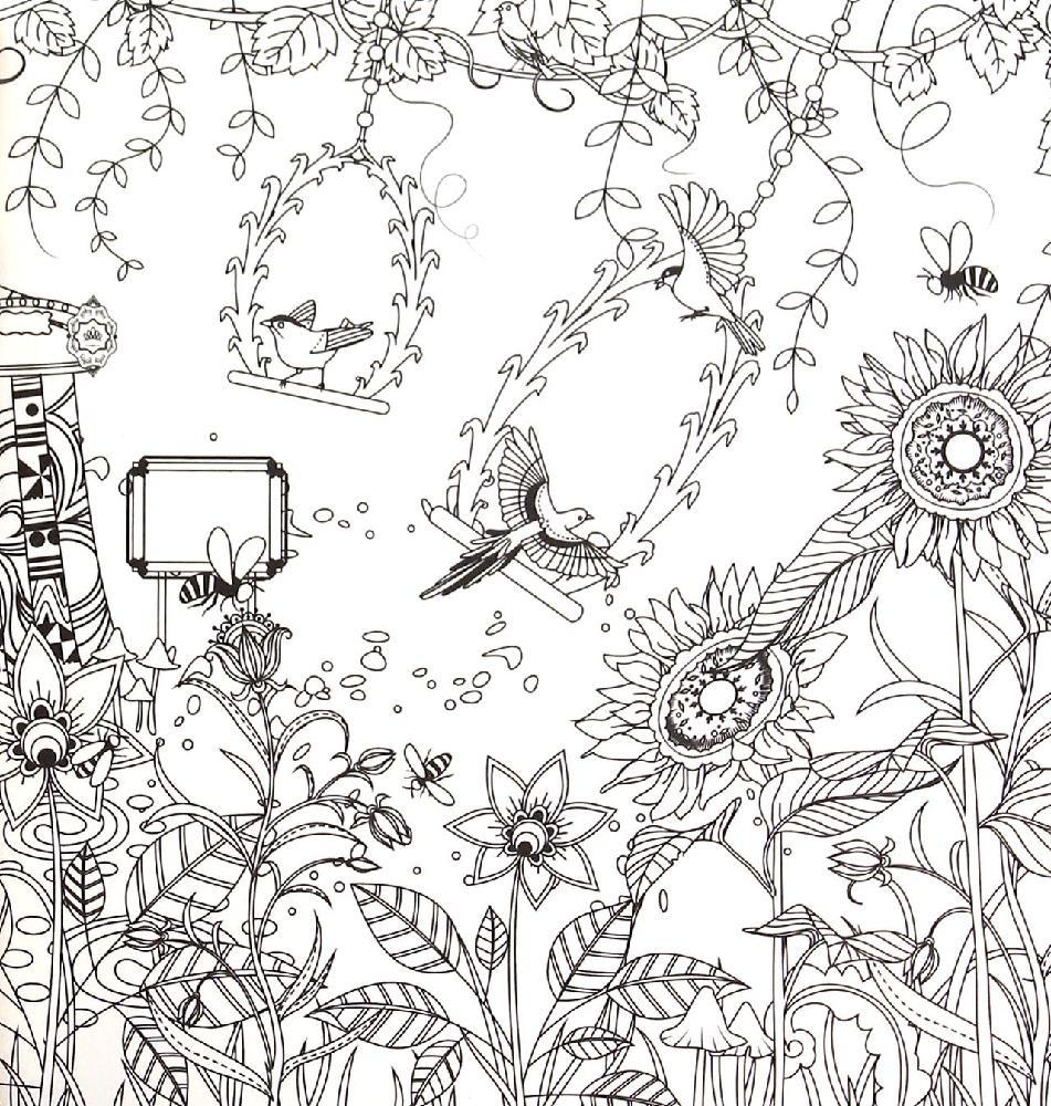 Dream Garden Coloring Books For Children Adult Relieve Stress Secret Kill Time Graffiti Painting Drawing