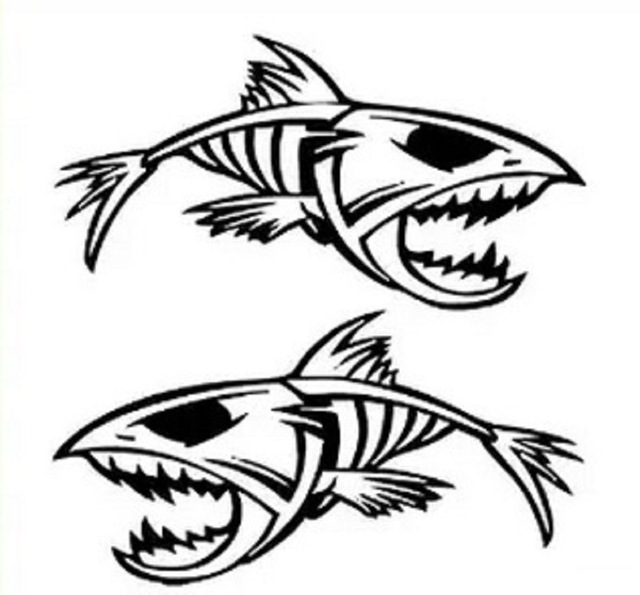 Fishing boat decals reviews online shopping fishing boat for Vinyl window designs ltd complaints