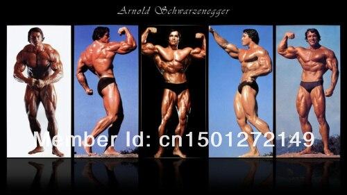 US $16 99 |04 Arnold Schwarzenegger Bodybuilder Mr Olympia Universe []  24