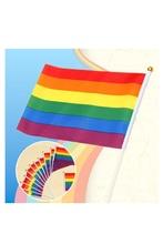 Rainbow Hand Flag For Gays | 12 Pcs
