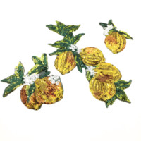 Set of 3 Sew On Sequin Beaded Lemon Patch Fruits Applique Plant Patches For Dress Appliques Parches Sewing Accessories AC0936