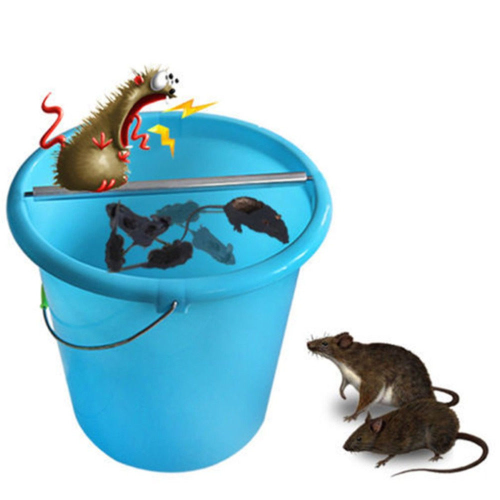 Online Shop Humane Live Mouse Trap with A Clear Top , Multiple Catch ...