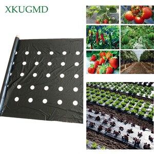 Image 1 - 95cm * 50m 5 fori 0.03mm nero pellicola per pacciamatura giardinaggio fiore piante per piantine vegetali membrana in plastica perforata con Film in PE
