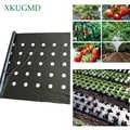 95cm * 50m 5 furos 0.03mm preto mulch filme jardinagem flor vegetal mudas plantas plástico perfurado pe filme mulching membrana