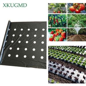 Image 1 - 95cm*50m 5Holes 0.03mm Black Mulch Film Gardening Flower Vegetable Seedling Plants Plastic Perforated PE Film Mulching Membrane