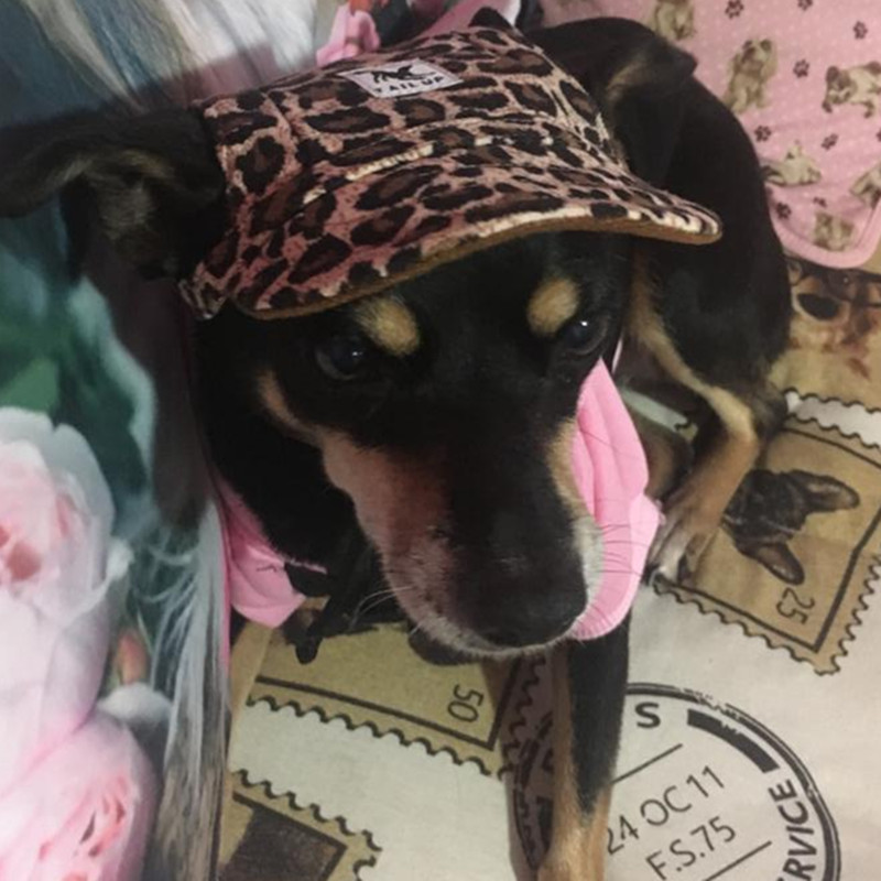 Sun Hat For Dogs Fashion Cute Pet Hund Casual Bomuld Baseball Cap - Pet produkter - Foto 5